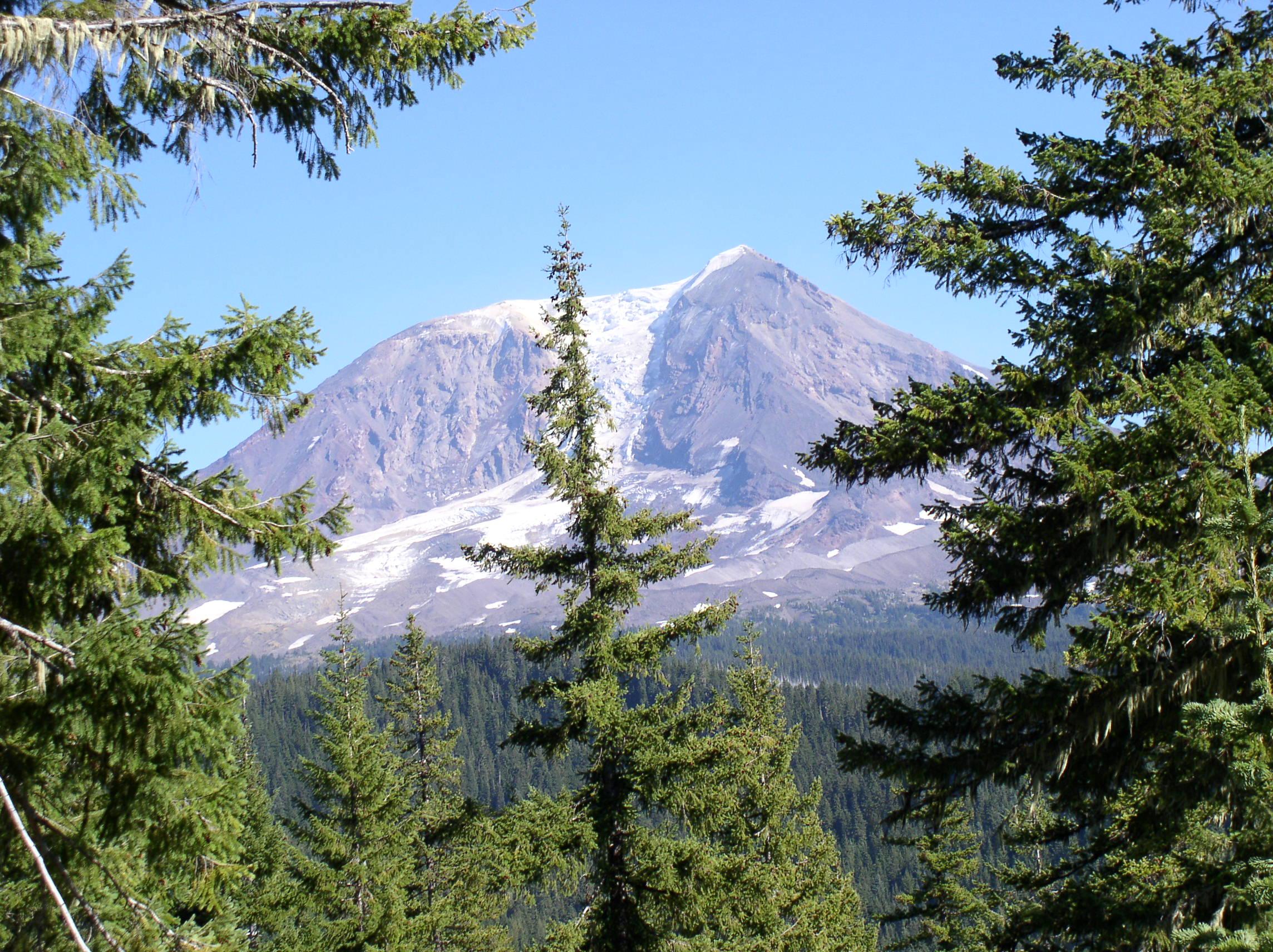 Mt. Adams, Cascade Range, Washington