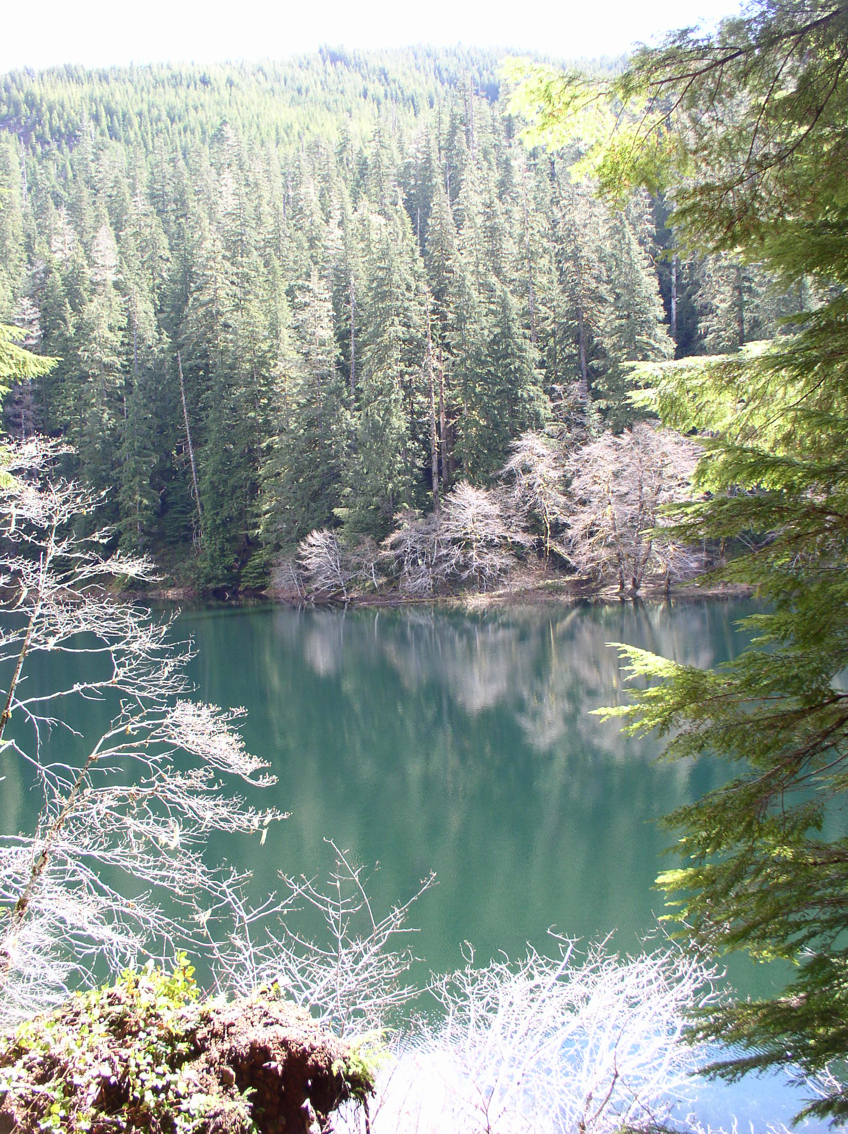 Spider Lake, Washington
