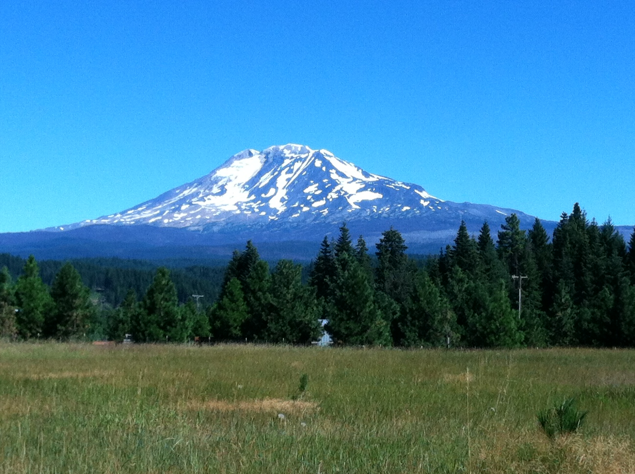 Washington's Mt. Adams, on my way to bear camp.