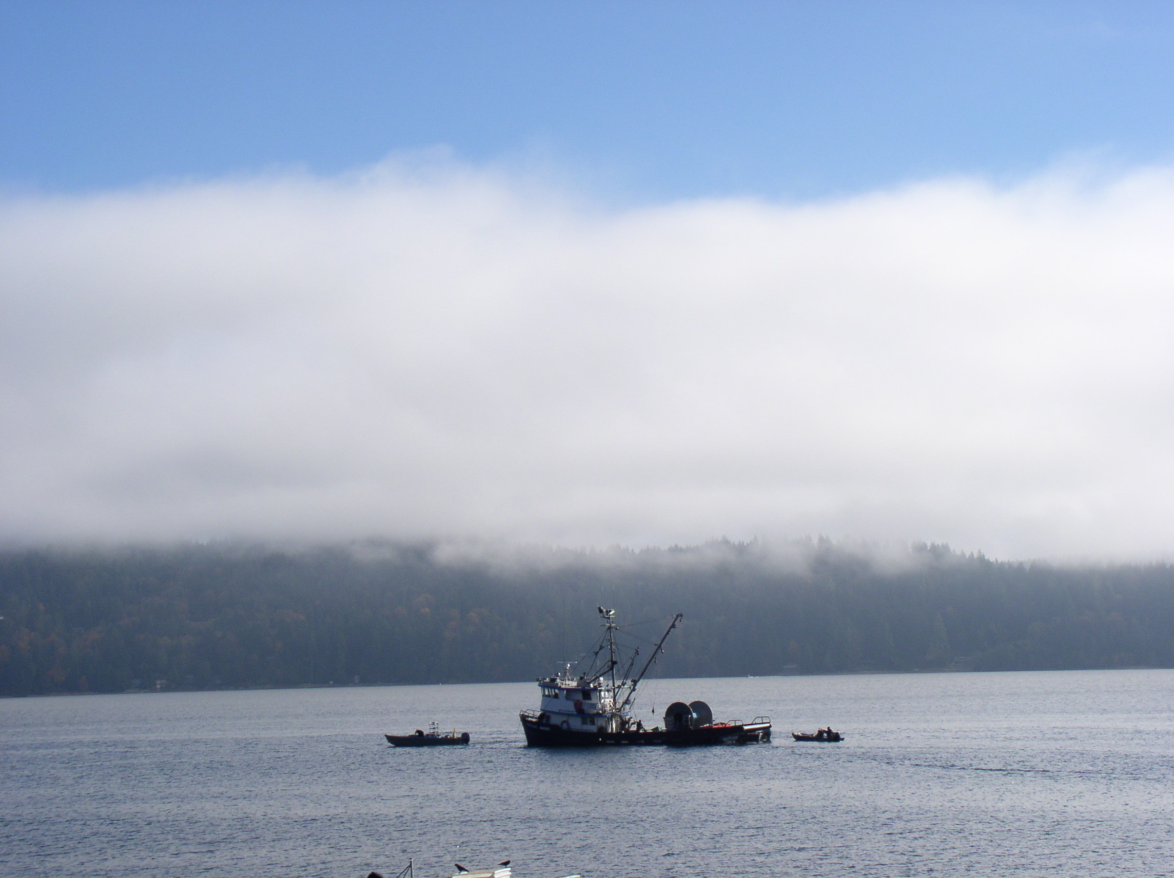 Marine layer of clouds above Hood Canal.