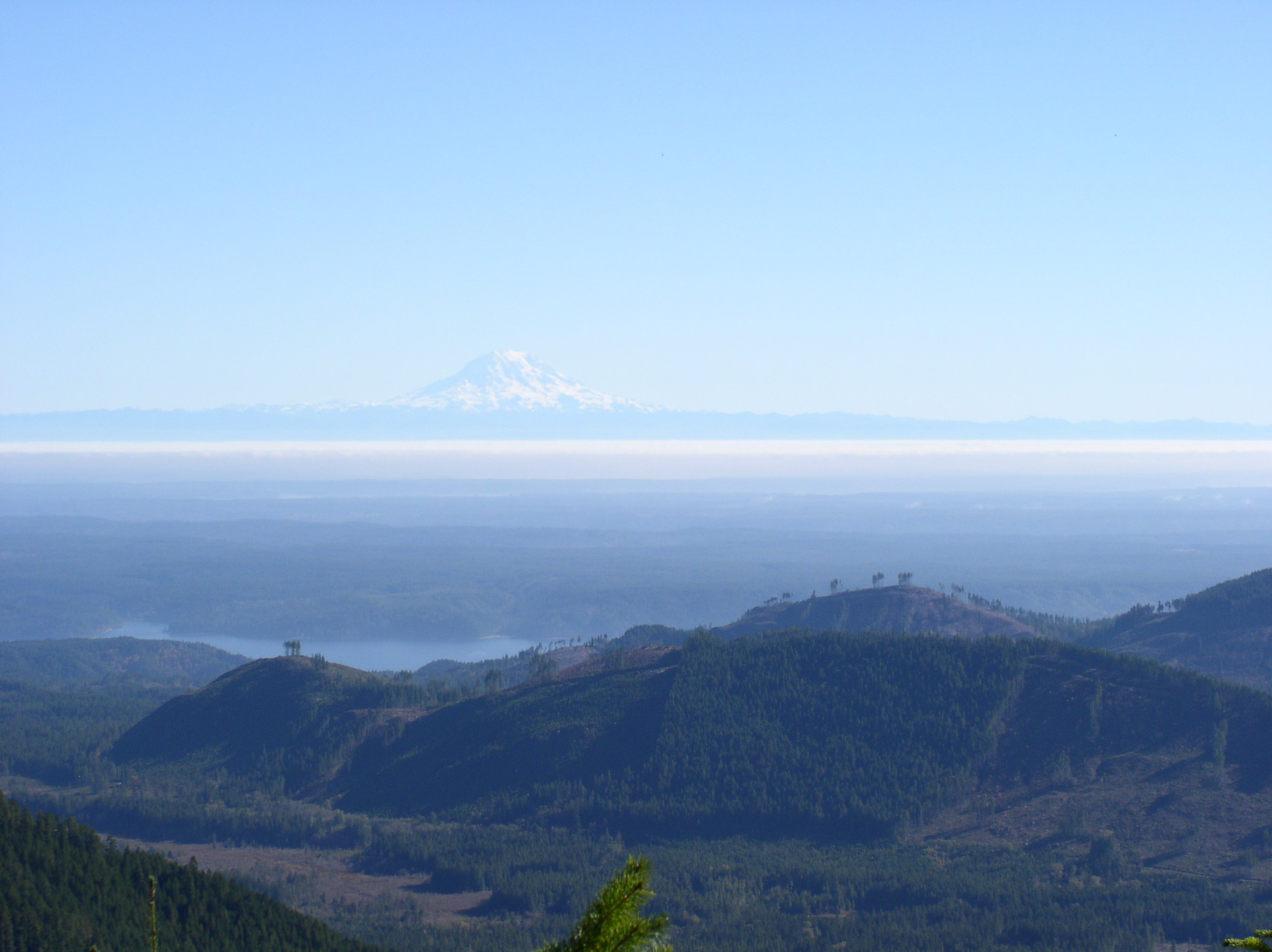 Mt. Rainier in the distance.