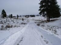January Cabin 08 013.jpg
