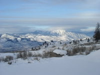 January Cabin 08 009.jpg