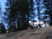 Deer Hunting 06 004.jpg