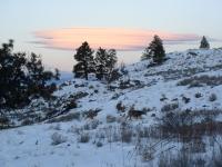January Cabin 08 019.jpg