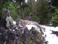 Hunting Nov 06 015.jpg